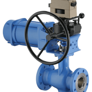 Segmented Ball Valves and Rotary Plug Valves